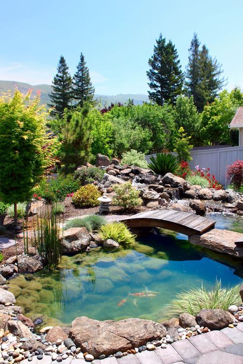 Asian Landscape by San Mateo Landscape Architects & Landscape Designers Ami Saunders, MLA