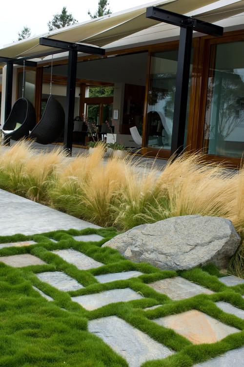Contemporary Landscape by Encinitas Landscape Architects & Landscape Designers Grounded - Richard Risner RLA, ASLA